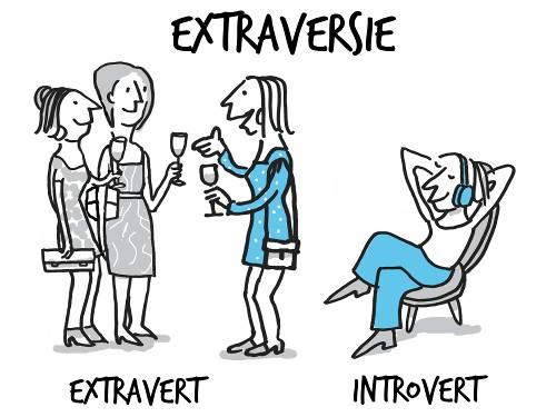 Afbeeldingsresultaat voor Introvert